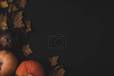 南瓜和干枯的落叶