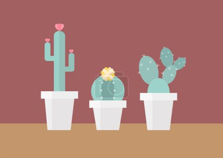 Flat illustration cactus group in white pots