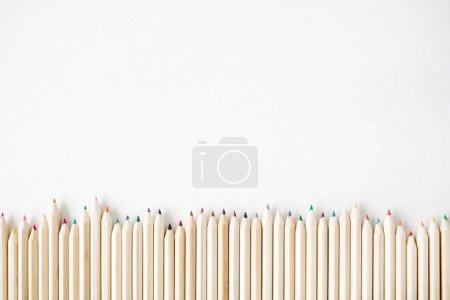 彩色木铅笔