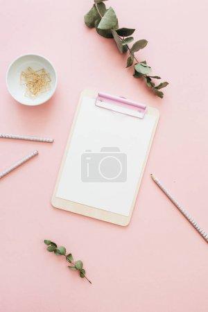 平的办公室工作空间与空白的剪贴板, 桉树分支在粉红色背景。顶部视图最小模型模板概念.